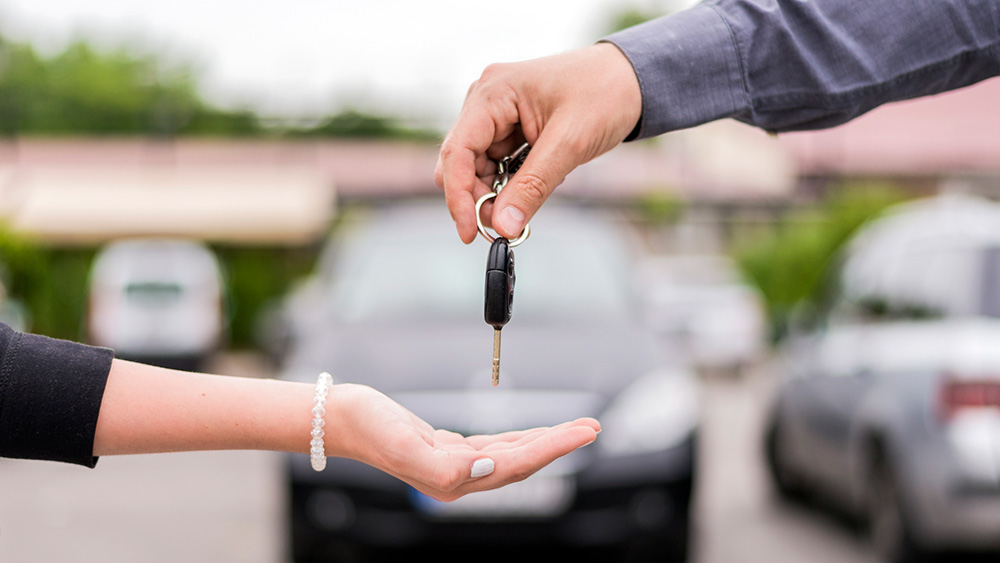 More about the car rental–